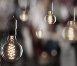 Wondering What Type Of Bulbs To Buy This Festive Season?