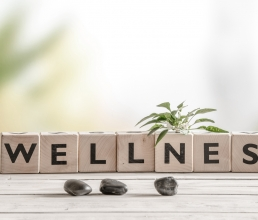 How important is it to leverage wellness at Workplace?